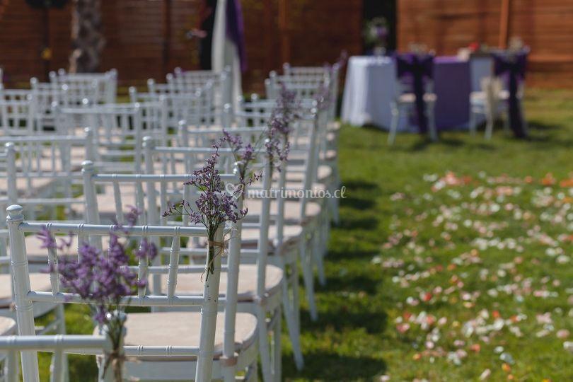 Ceremonia violeta - 2017