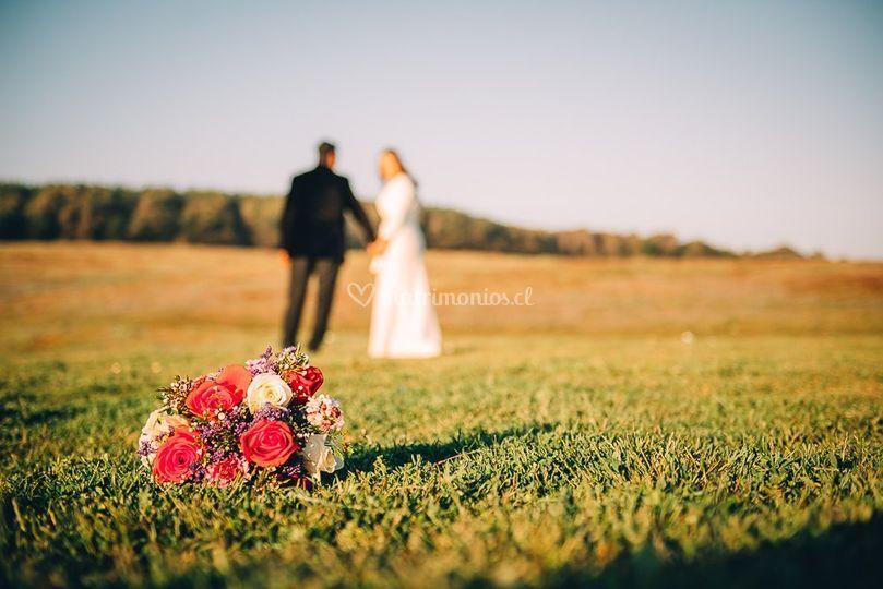 Muestra de matrimonios