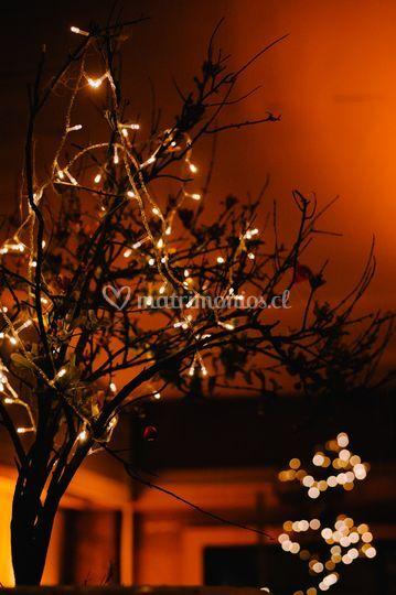 Árbol con luces de navidad
