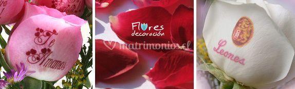Servicio rosas impresas