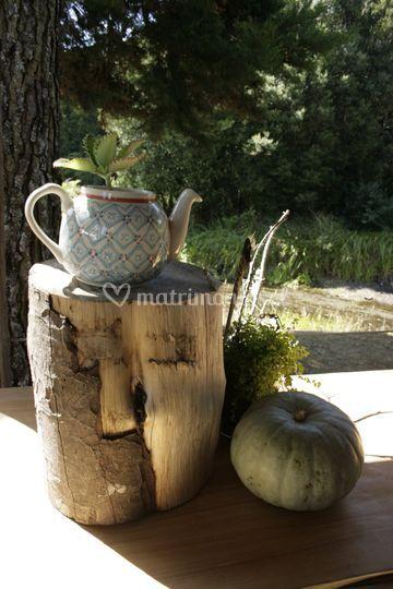 Detalle mesón té