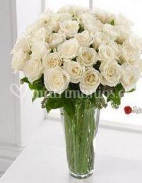 Rosas blancas en jarrón