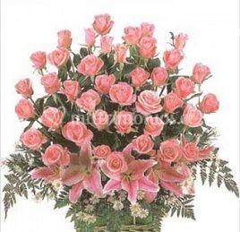 Rosas rosadas 24 unidades