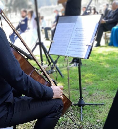 Angeli músicos ceremonia 2021