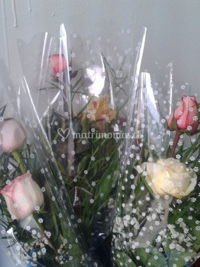 Rosas en papel celofán