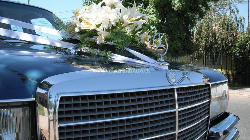Clásico Mercedes Benz