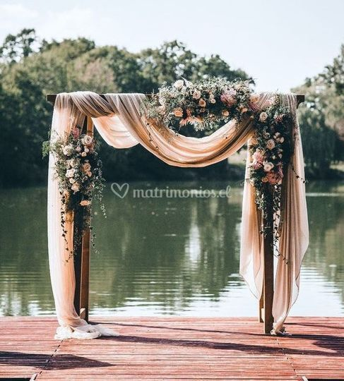 Arco magnolio