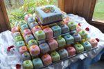 Minicakes de Tortas Veloso