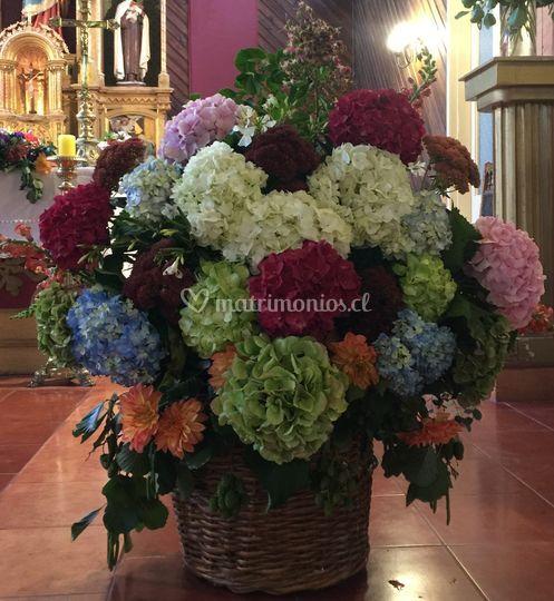 Canasto hortensias colores