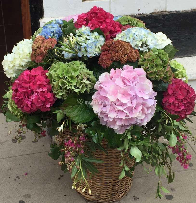 Canasto Hortensias Colores De Belfiore Foto 15