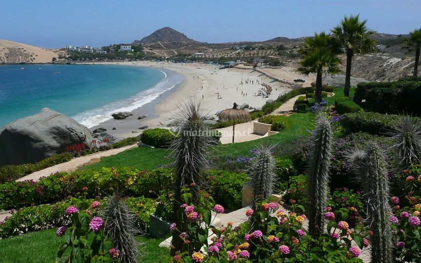 Vista general playa