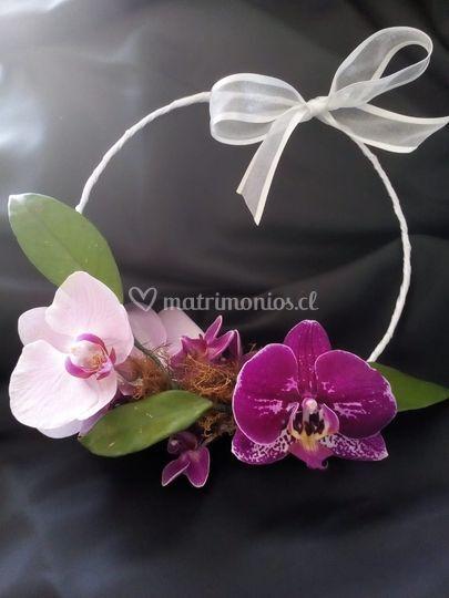 Hoop bouquette de orquídeas