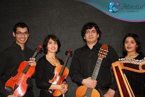 Músicos Abedul