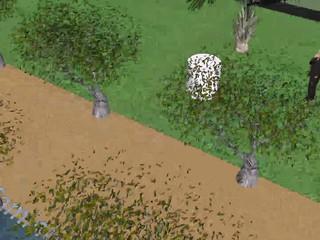 Olivos del Monte en 3D