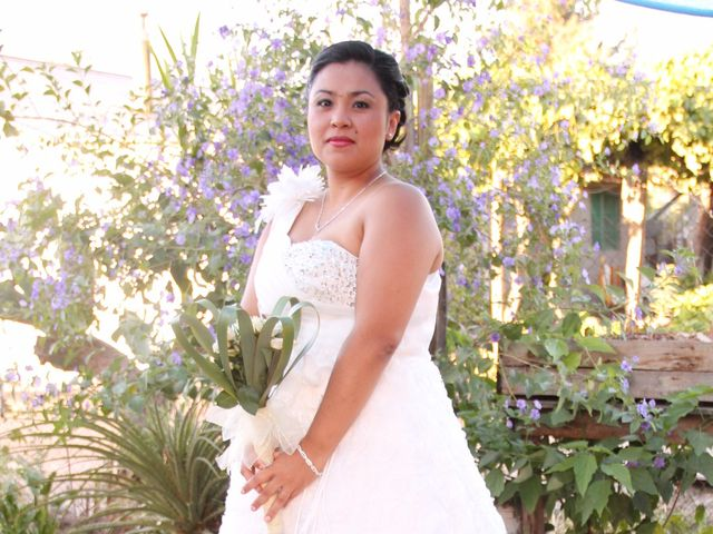 El matrimonio de Williams y Isolina en San Fernando, Colchagua 3