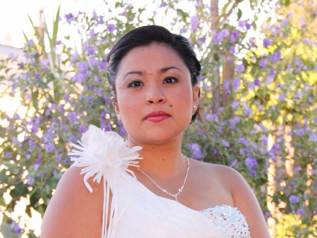 El matrimonio de Williams y Isolina en San Fernando, Colchagua 5