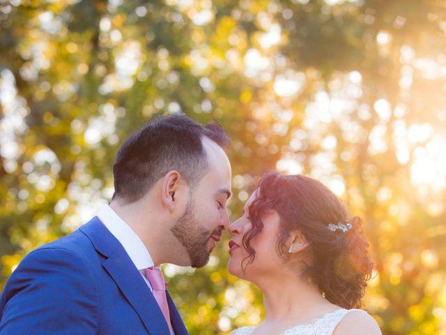 El matrimonio de Daniela y Hans en Temuco, Cautín 2
