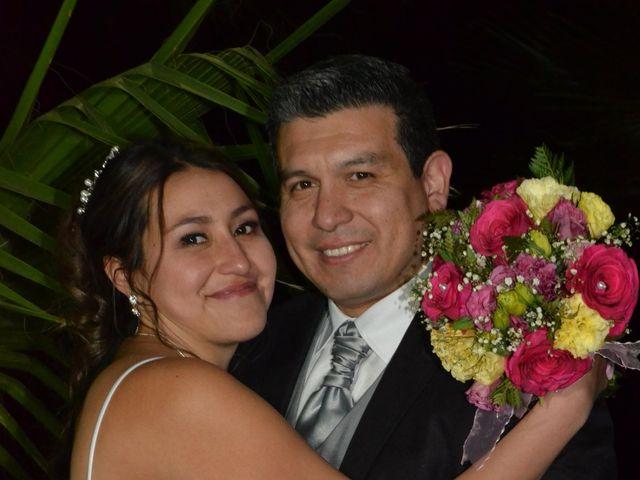 El matrimonio de Yanira y Luis en Pirque, Cordillera 8