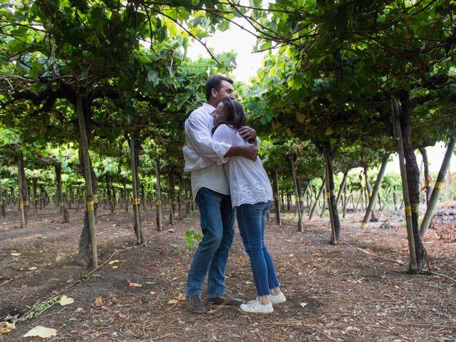 El matrimonio de Carlos y Carolina en San Vicente, Cachapoal 2