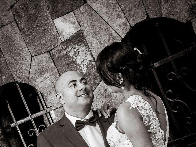 El matrimonio de Fernando y Cecilia en Providencia, Santiago 14