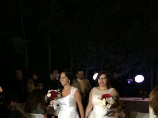 El matrimonio de Daniela  y Carolina  2