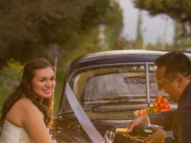 El matrimonio de Robinson y Valeria en Paine, Maipo 55