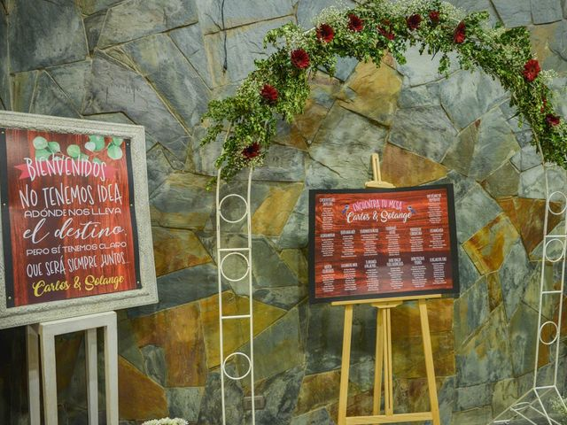 El matrimonio de Carlos y Solange en Puerto Varas, Llanquihue 15