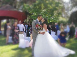 El matrimonio de David  y Amisaddai