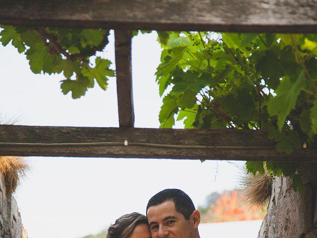 El matrimonio de Patricio y Mónica  en Pirque, Cordillera 21