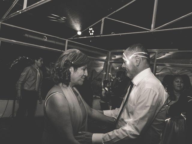 El matrimonio de Patricio y Mónica  en Pirque, Cordillera 31