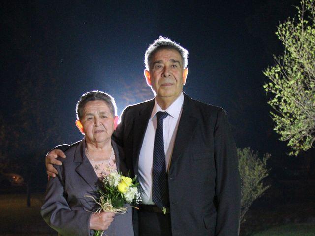 El matrimonio de Orlando y Ana en San Fernando, Colchagua 41
