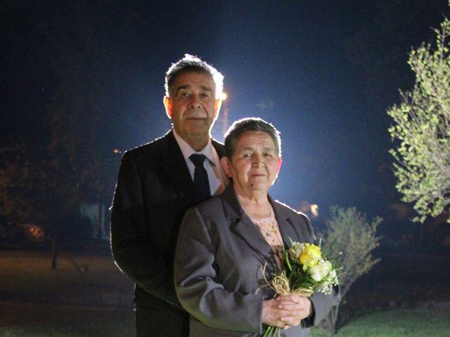 El matrimonio de Orlando y Ana en San Fernando, Colchagua 43