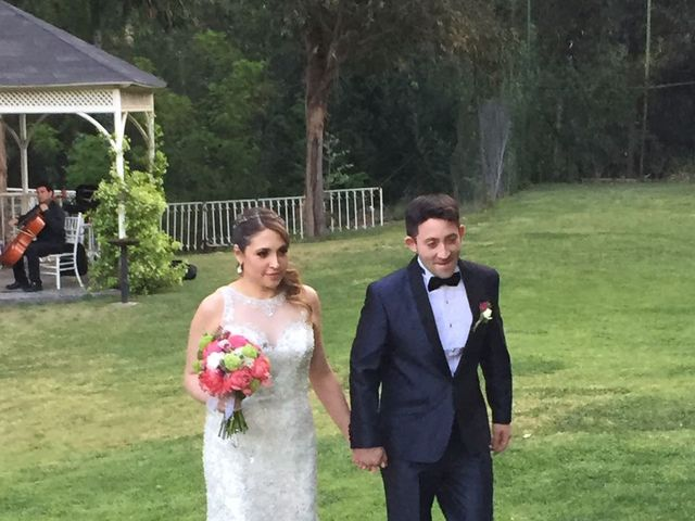 El matrimonio de Héctor  y Cynthia  en San José de Maipo, Cordillera 6