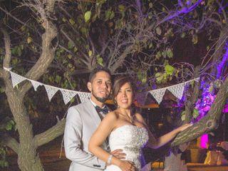 El matrimonio de Janis y Joel 3