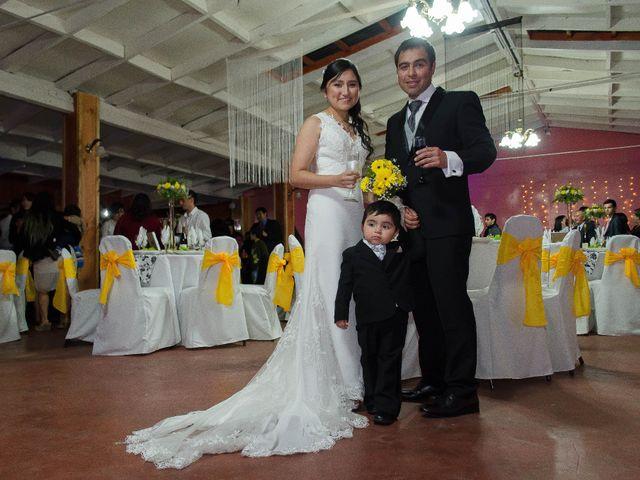 El matrimonio de Mario y Yuri en Curacautín, Malleco 61