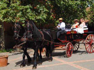 El matrimonio de Ana y Francisco 1