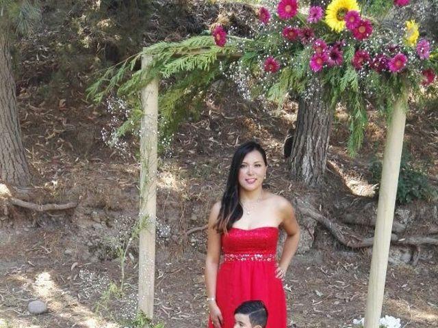 El matrimonio de Christopher  y Andrea en Santiago, Santiago 9