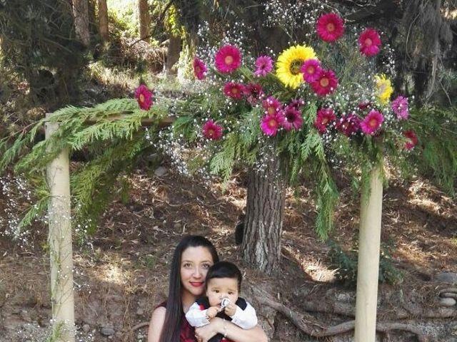 El matrimonio de Christopher  y Andrea en Santiago, Santiago 10