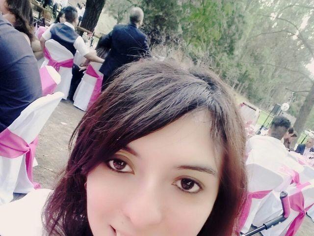 El matrimonio de Christopher  y Andrea en Santiago, Santiago 22