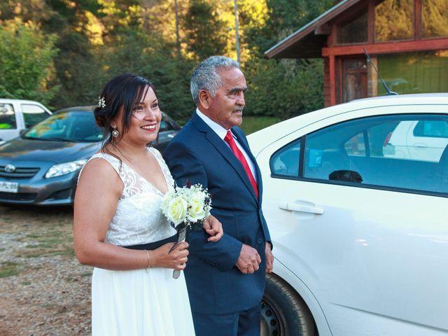 El matrimonio de Marcelo y Viviana en Valdivia, Valdivia 11