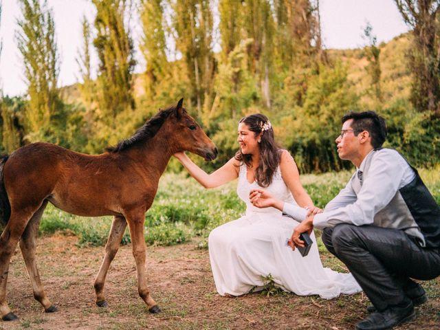 El matrimonio de Carolina y Fabian
