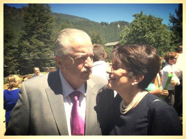 El matrimonio de Ximena y Mario en Pucón, Cautín 4