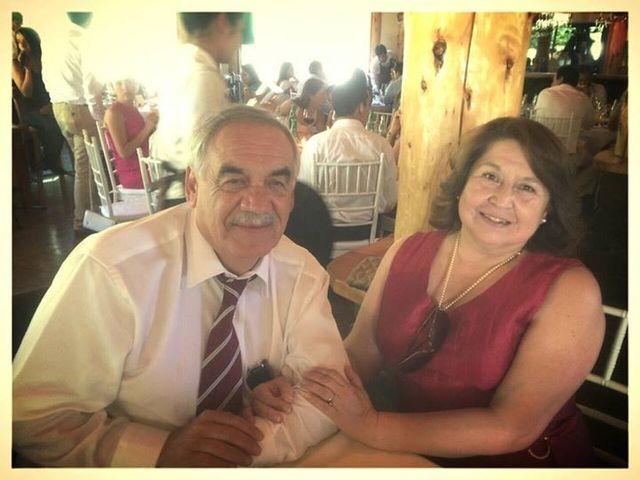 El matrimonio de Ximena y Mario en Pucón, Cautín 6
