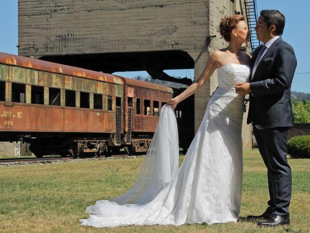 El matrimonio de Fabián y Galina en Temuco, Cautín 19