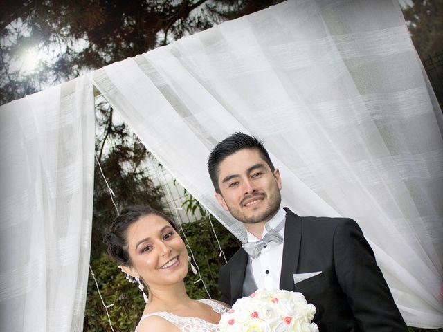 El matrimonio de Nicolás y Andrea en Calera de Tango, Maipo 8
