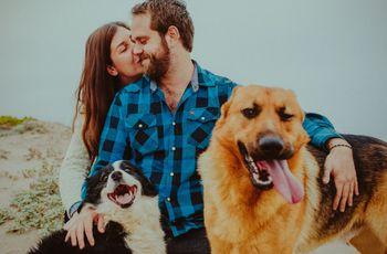 Por qué realizar una sesión de prematrimonio en otoño es una gran idea