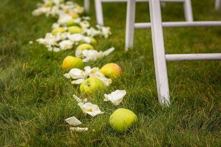 Ideas para decorar el matrimonio con frutas