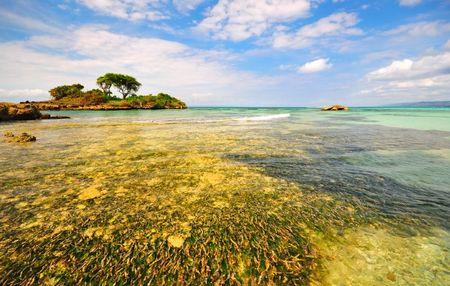 Disfruta de Punta Cana en tu luna de miel