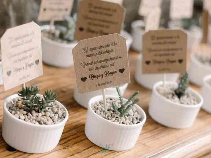 Cactus Como Detalles Para Los Invitados 30 Presentaciones