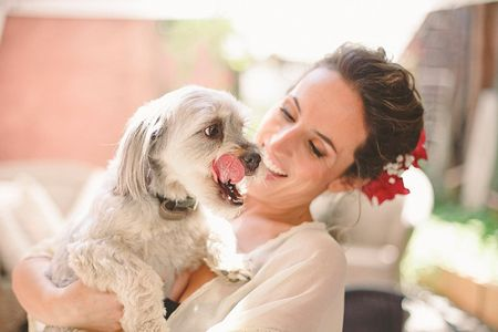 Tips para que tu mascota participe en el matrimonio